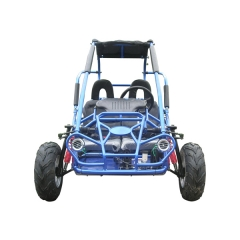MITTE TrailMaster Dune Buggy Off-Road