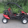 Sport Racing Off Road Buggy 200cc rot