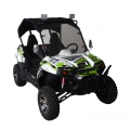 UTV Side By Side Off-Road 300