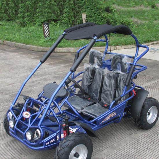 kinder benzin buggy 200cc fabrik preis. Black Bedroom Furniture Sets. Home Design Ideas