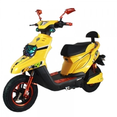 800W Electric Motorbike Scooter
