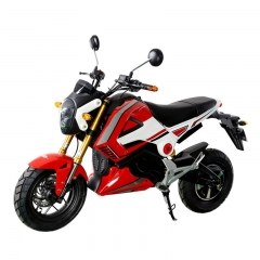Adults Electriec Motorbike 1000W