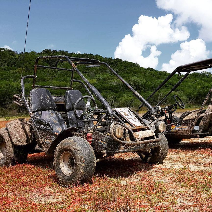 Off-Road Go Kart